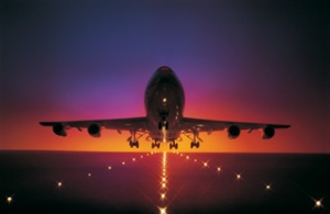 fly-night-1-jpg